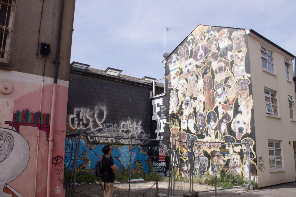 Brighton, UK - Dog Mural